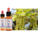 OAK , ROBLE , 10 ML, FLORES DE BACH, HEALING HERBS